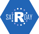 Sharing thoughts on satRdays R Conference, Budapest 2016 #satRdays